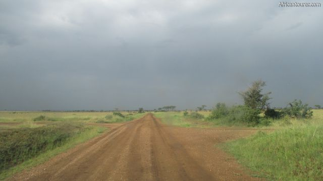 Grumeti game reserve, on one of the roads on a cloudy morning