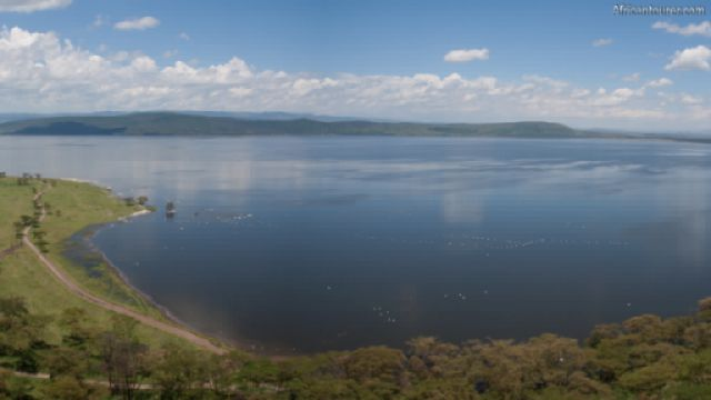Lake Naivasha, a bird's eye view <sup>1</sup>