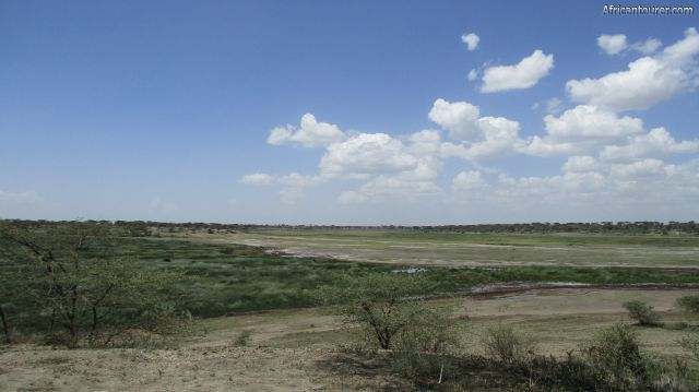 lake elemeti of Ngorongoro conservation area, a view from the eastern side with the big marsh (left) and wildebeest (far right)