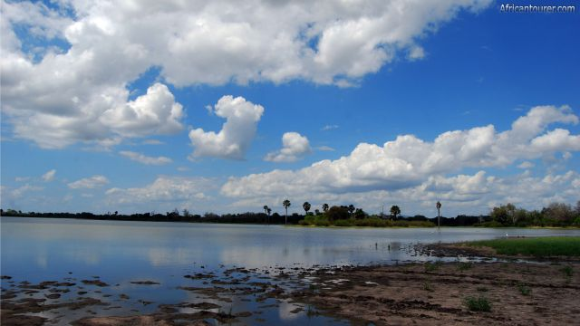 Lake manze of Selous game reserve, a view from the shore. [1]