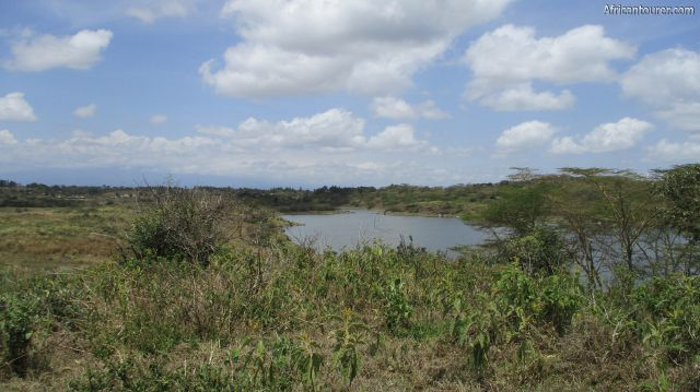 lake Rishateni of Arusha national park, as seen from the road circuit west of it