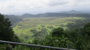leitong view point