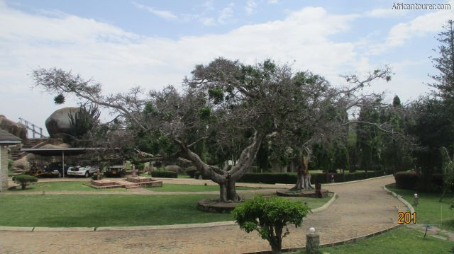 Mwalimu Nyerere's home of Mara, from left the car park, mausoleum (behind trees) as seen from inside the compound