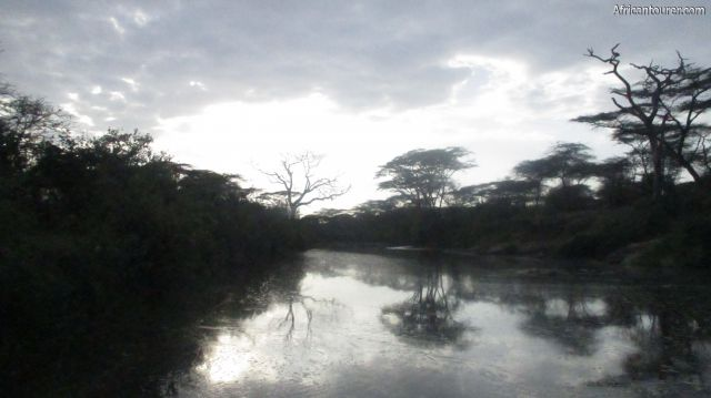 Nyabogati hippo pool of Serengeti national park, as seen a bridge from the road to fort Ikoma from Seronera